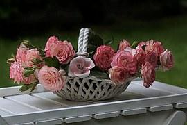 basket roses 1